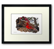 MALE CARDINAL ON STUMP Framed Print