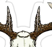 Whitetail deer skull  Sticker