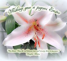 Easter Greeting Card - White Lily With Quote by MotherNature