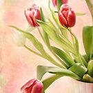 spring flourish by Teresa Pople