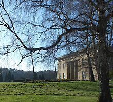 Belsay Hall by Lorna Taylor