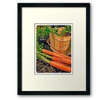 Fresh Garden Vegetables Framed Print