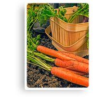 Fresh Garden Vegetables Canvas Print