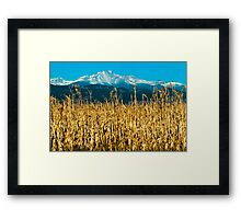 Winter Corn Fields and Longs Peak Framed Print