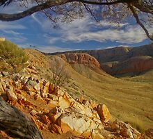 Ormiston Gorge and Pound, Northern Territory, Australia by fotosic