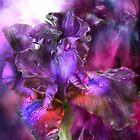 Iris - Dark Goddess by Carol  Cavalaris