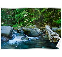 creek scape Poster