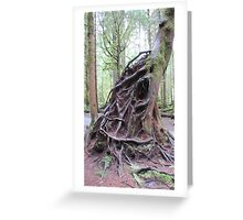 Exposed roots Greeting Card