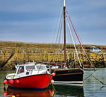 Mousehole Harbour Evening 2 by Susie Peek