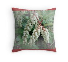 Andromeda - Lily of the Valley Shrub - Pieris japonica Throw Pillow