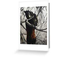 Preening - Red Tail Black Cockatoo Greeting Card