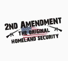 Homeland Security - 2nd Amendment by sturgils