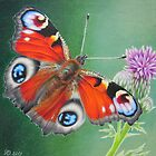 Peacock Butterfly by lanadi