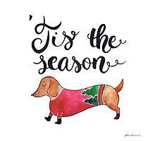 'Tis the Season for Christmas and Dog Lovers Photographic Print