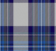 00459 Blue Dunnett Tartan Fabric Print Iphone Case by Detnecs2013