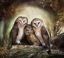 Three Owl Moon by Carol  Cavalaris