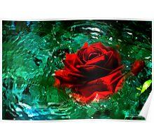 Rosey Splash Poster