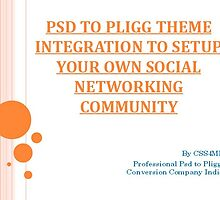 1.  PSD to Pligg: Mold website an Effective Social Networking Community. by nels201