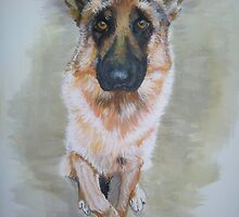 German Shepherd 2 by C.A. Rowe