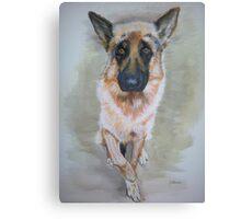 German Shepherd 2 Canvas Print