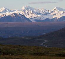 Alaska Road by Walter Quirtmair