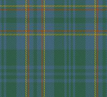 00463 Blue Ridge District Tartan Fabric Print Iphone Case by Detnecs2013