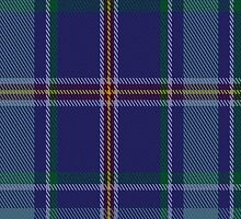00464 Blue Ridge Highlands Heritage District Tartan Fabric Print Iphone Case by Detnecs2013