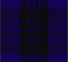 00466 Blue Spirit Fashion Tartan Fabric Print Iphone Case by Detnecs2013