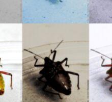 Dead Bugs VRS2 Sticker