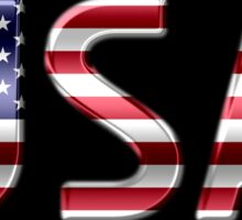 USA - American Flag - Metallic Text Sticker