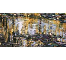 Willow reflections, Monets Garden, Giverny Photographic Print