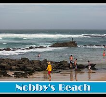 Rockpool Swimmers - Nobby's Beach by reflector
