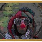 Silly Clown by jollykangaroo