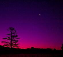 Sundown Ballarat No 2 ... by Erin Davis