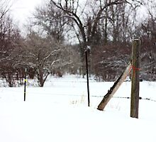 Snowy Afternoon by AbigailJoy