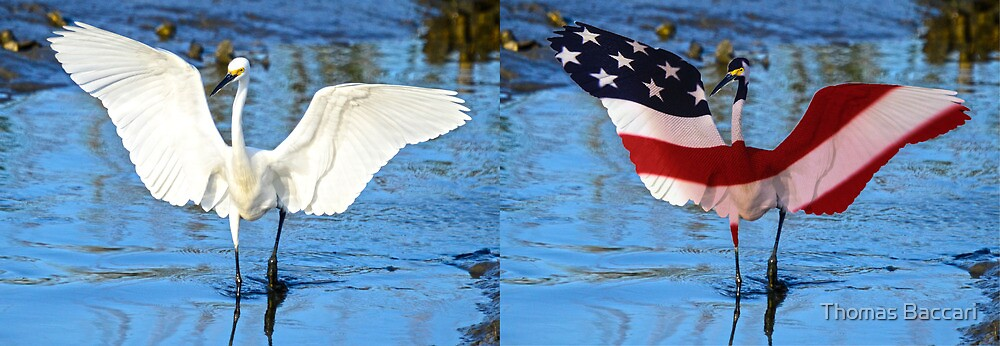 Before and After Getting Dressed for the 4th of July by TJ Baccari Photography