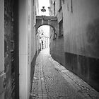 Alleyway by Lorna Taylor