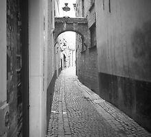 Alleyway by Lorna Taylor