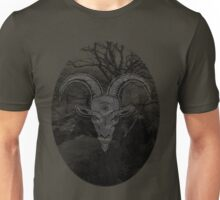 Sacrifice and Rebirth Unisex T-Shirt