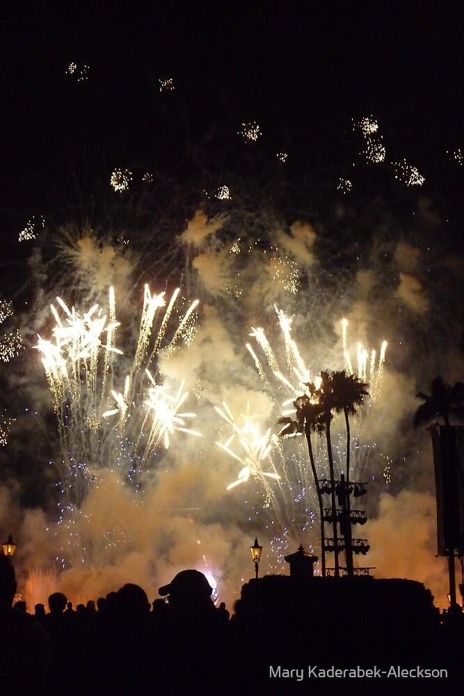 Epcot Fireworks by Mary Kaderabek-Aleckson