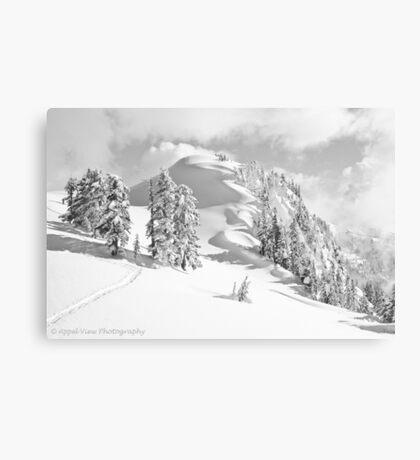 Snow Waves Canvas Print
