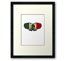 Mexico! Framed Print