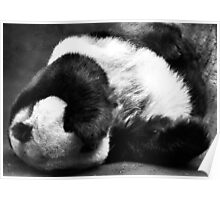 Even Pandas Have Bad Days Poster