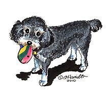 Lucy the Poodle Mix Custom Caricature Photographic Print
