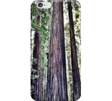 Avenue of the Giants iPhone Case/Skin