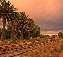 The Train Don't Run Here No More by Wendi Donaldson Laird