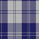 00481 Erskine Blue Dance Tartan Fabric Print Iphone Case by Detnecs2013