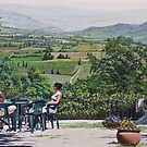 Stopping for coffee, Rousillon, France by Freda Surgenor