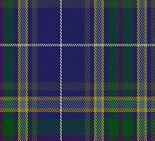 00488 Highland Blue Tartan Fabric Print Iphone Case by Detnecs2013
