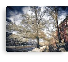 Brookline, MA. Just another winter day. Canvas Print